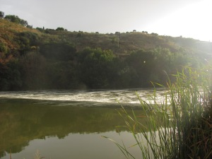 Toledo por el Tajo2