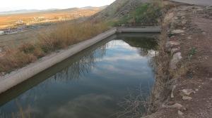 El agua que da su reflejo en todo lo pinta tal como es