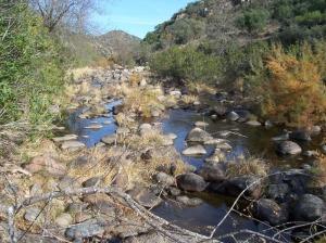 Bellezas naturales en Sierra Morena