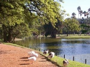 El apacible Palermu, sus jardines y lagos.