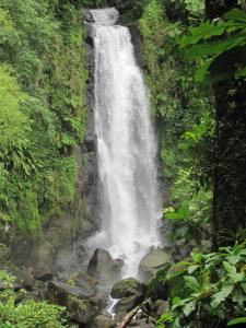 Cascada, Dominica