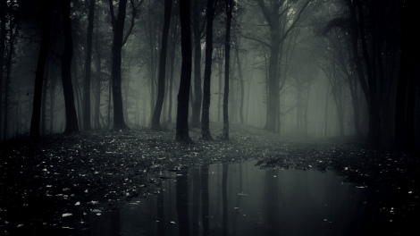 scary-dark-forest-desktop